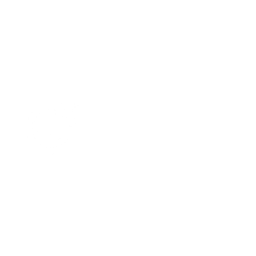 Tulip Family Travels